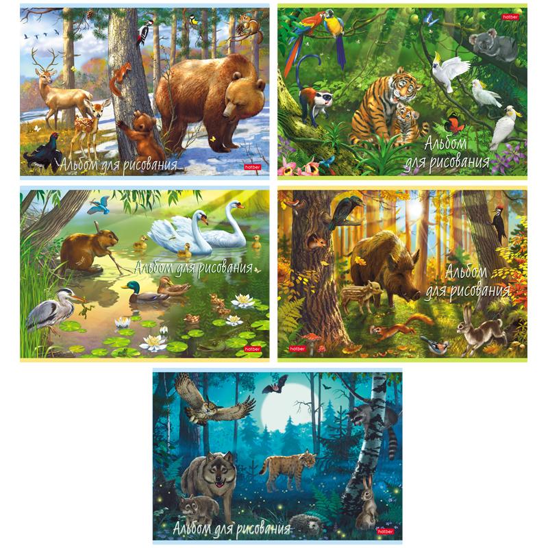 Hatber  20А4В Альбом для рисования 20л., А4, на скрепке В сказочном лесу